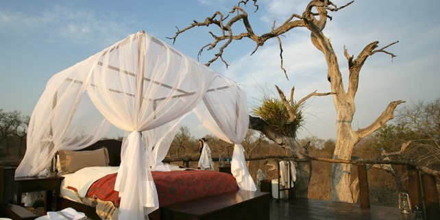 Honeymoon Hotspots: Luxury Safari Vacations