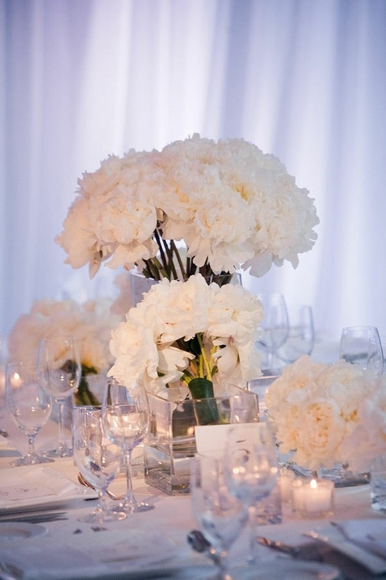 94 all white wedding reception decorations all for All for wedding decoration