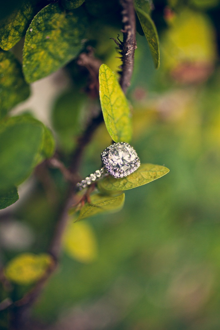 get inspired 16 pin worthy engagement ring photo ideas wedding ring ideas engagement rings 6