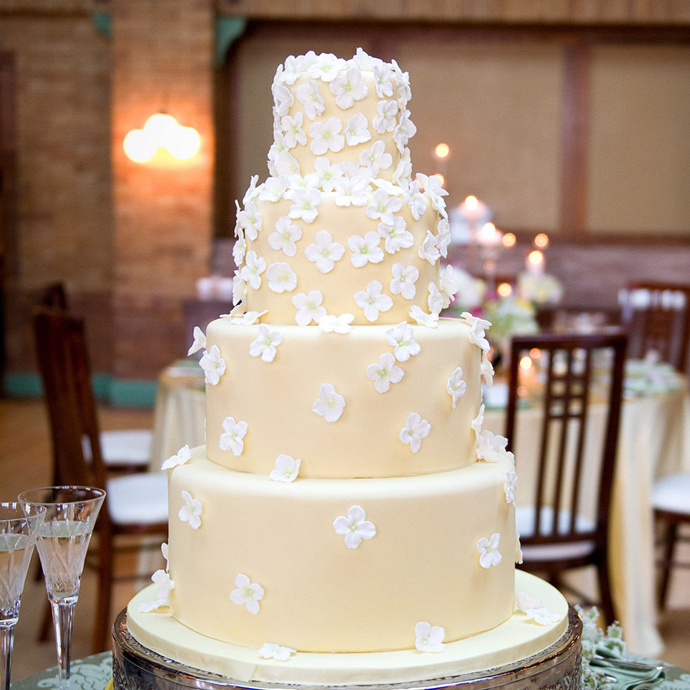 wedding-cake-2-07152014nz
