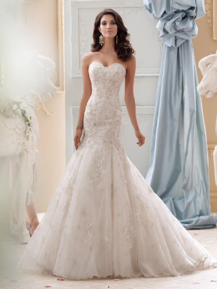 David tutera wedding dresses 2015 collection modwedding for Wedding dress david bridal