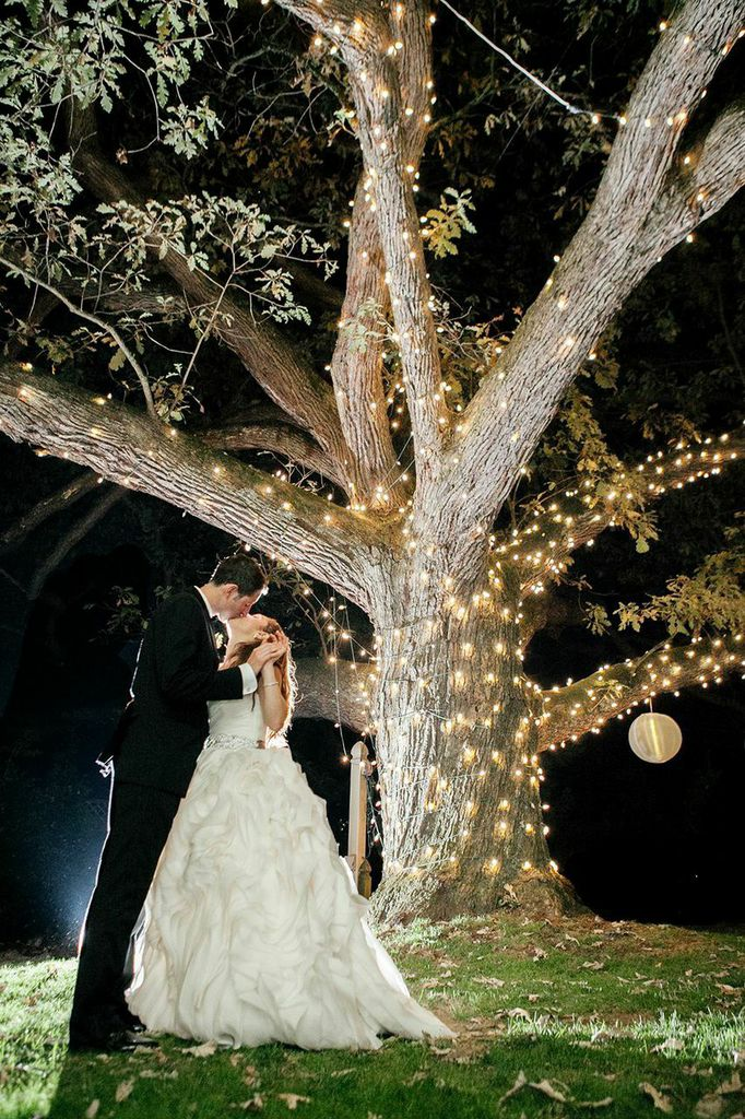 Moonlight Pennsylvania Wedding Under a Sparkling Tree at Aldie ...