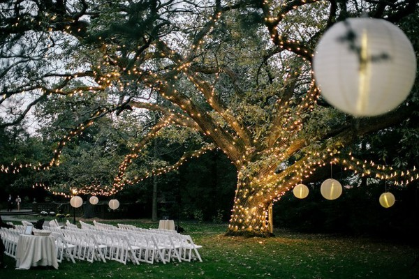 Moonlight Pennsylvania Wedding Under a Sparkling Tree at Aldie Mansion