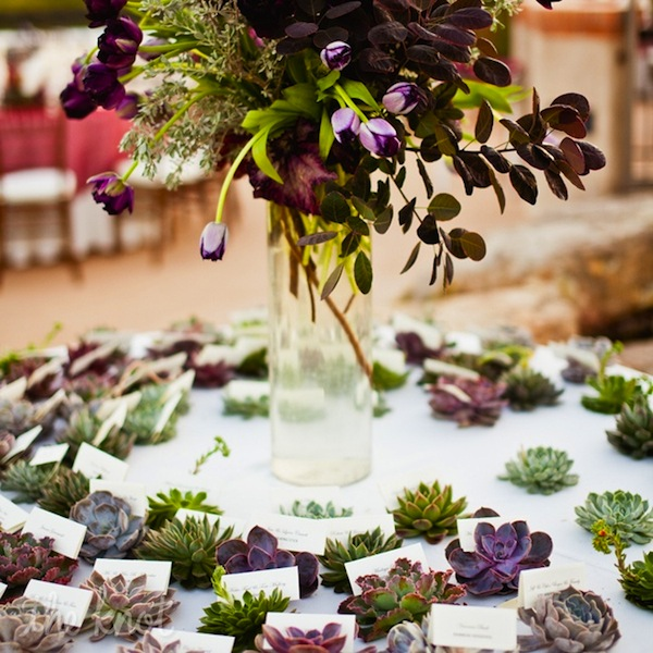 Wedding Table Place Card Ideas: Wedding Reception Ideas: Beautiful Escort Cards And