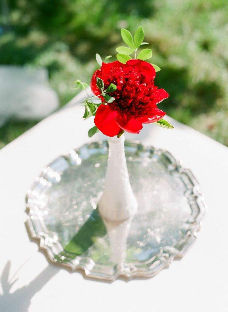 virginia-wedding-7-04252015-ky