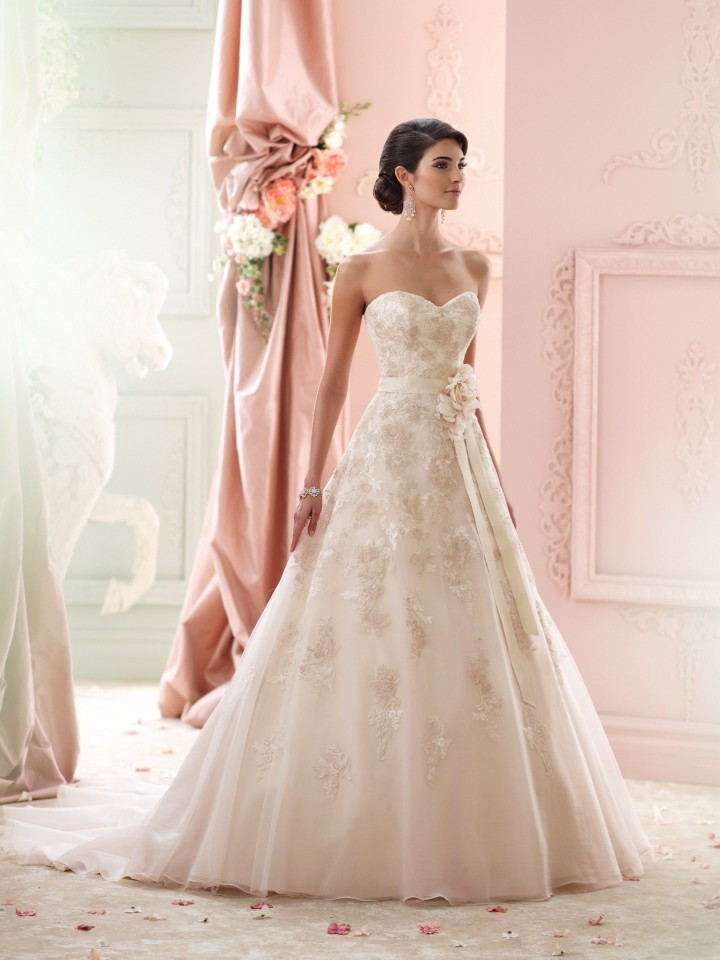 David Tutera For Mon Cheri Fall 2015 Bridal Collection David Tutera For Mon Cheri Fall 2015 Bridal Collection new pictures
