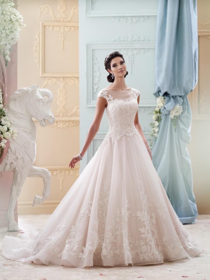 David tutera wedding dresses 2016 modwedding david tutera wedding dress 31 06112015nz junglespirit Image collections