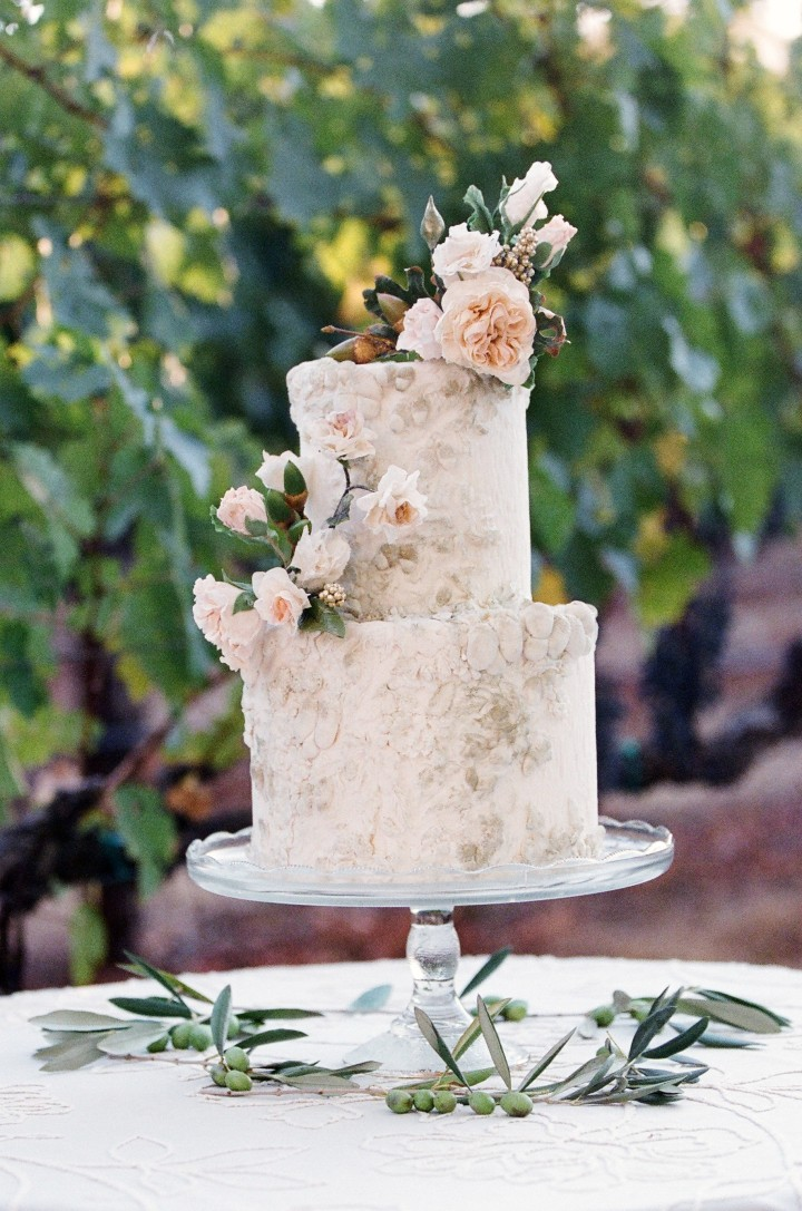 pope-valley-wedding-1-07252015-ky