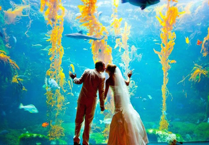 beautiful-places-to-get-married-16-09172015-km
