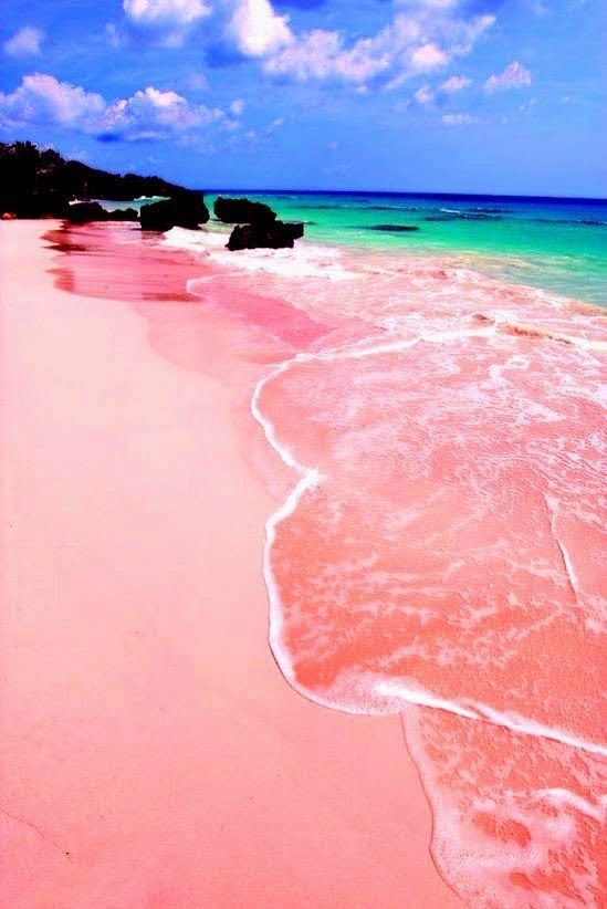 Pink Sand Beach Oahu The Best Beaches In World