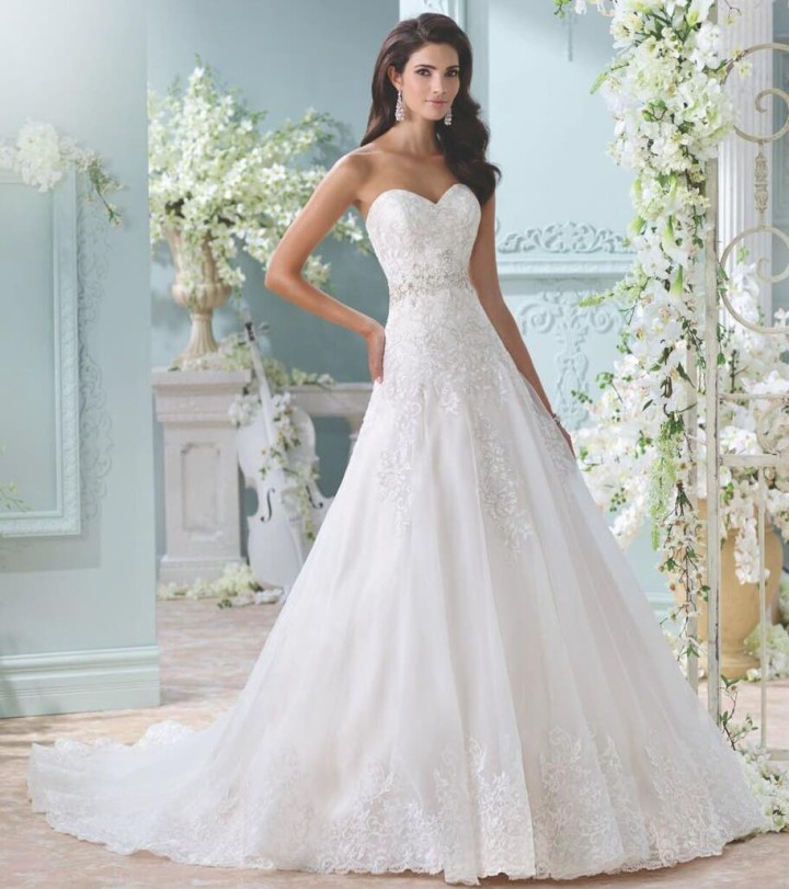 Aline Wedding Gown: 2016 David Tutera For Mon Cheri Wedding Dresses