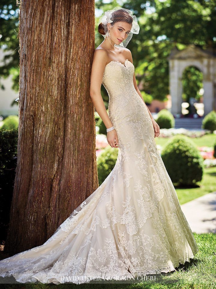 2017 David Tutera For Mon Cheri Coveted Lace Gowns Modwedding
