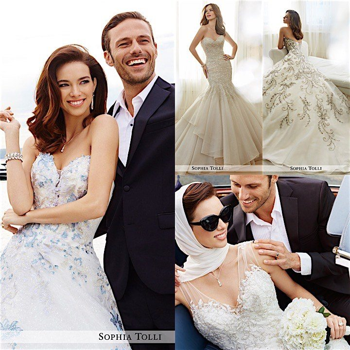sophia-tolli-collage-112116mc
