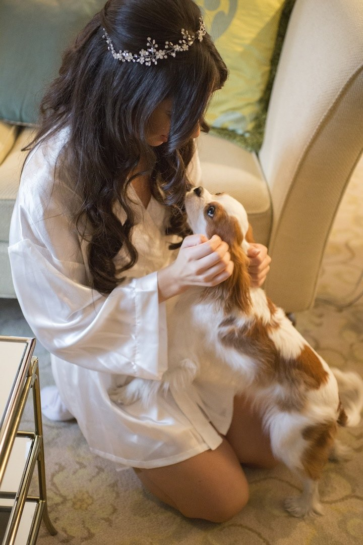 wedding-pet-new-york-wedding-11-08102015-ky
